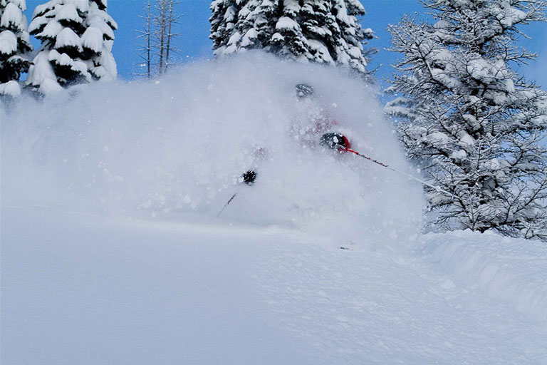 Legendary powder at Fernie Alpine Resort