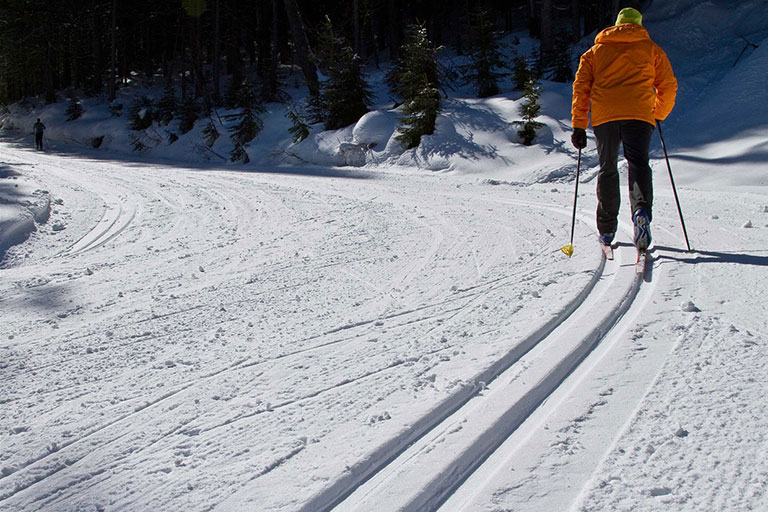 Nordic Skiing in Fernie