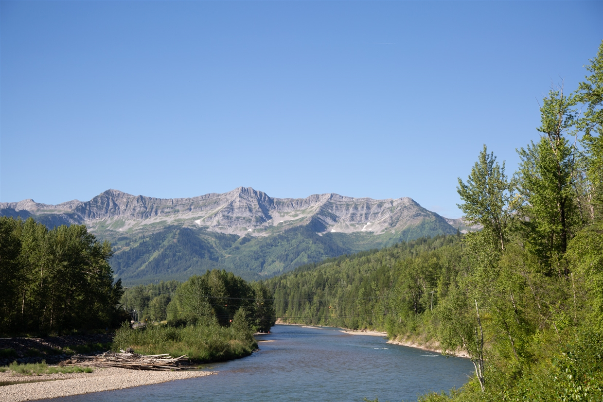 August 10th 2020 - Elk River looking south west towards Fernie Alpine Resort