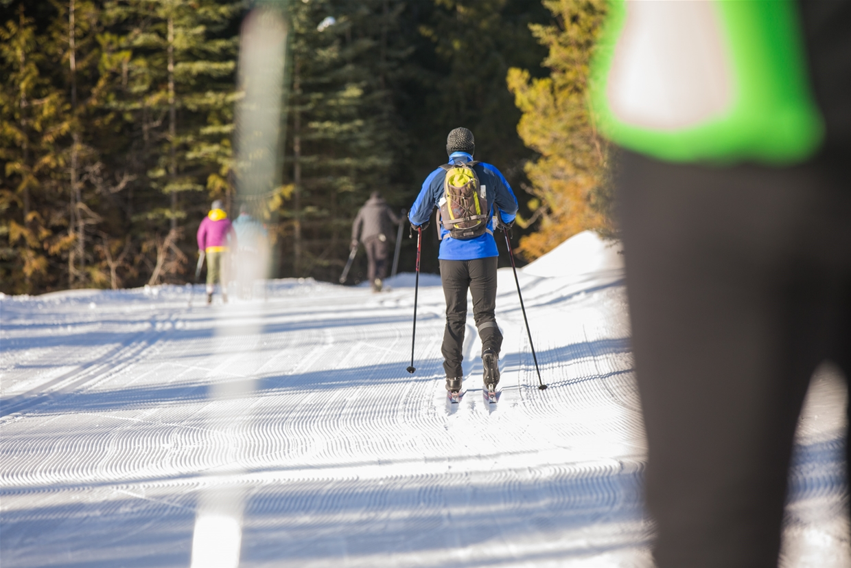 Ski out from the Elk Valley Nordic Centre to Fernie Alpine Resort