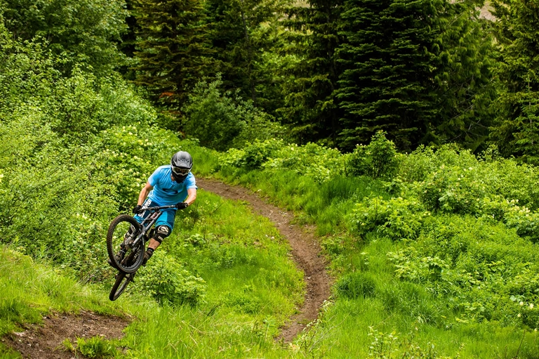 DH riding the Fernie Bike Park at Fernie Alpine Resort