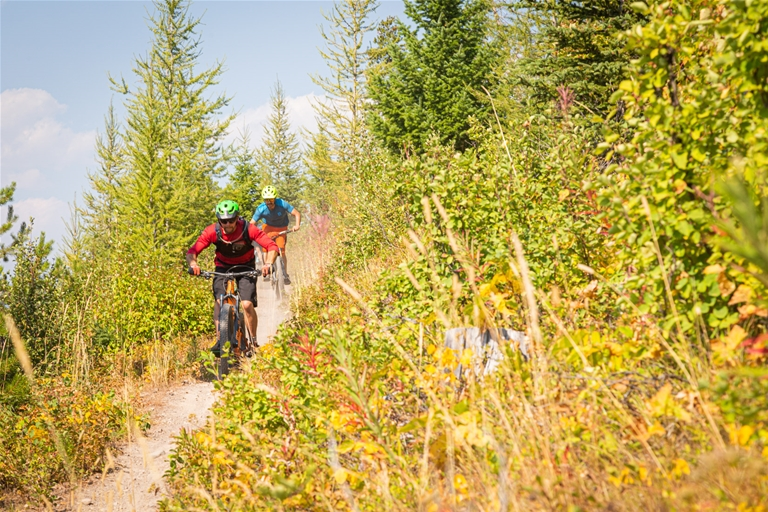 Singletrack trails make up the way of the Elk Valley Trail between Fernie and Sparwood