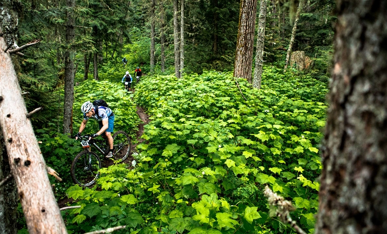 Fernie 3 Mountain Bike Stage Race