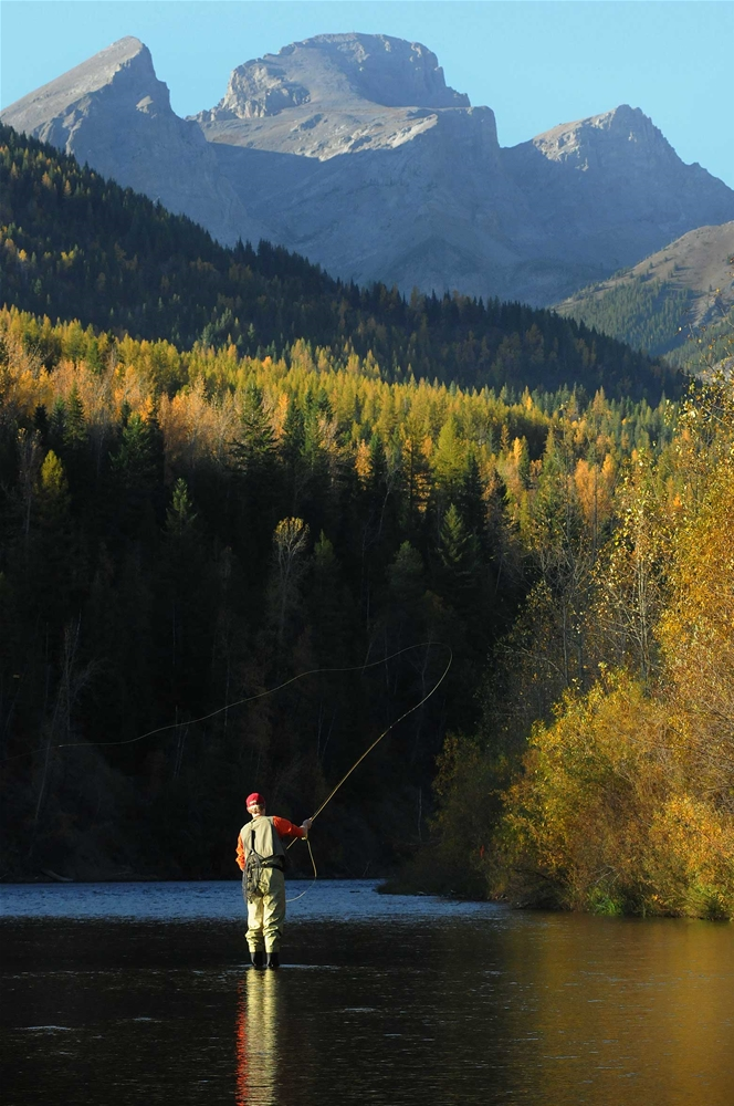 Fly fishing on the Elk River in Fernie