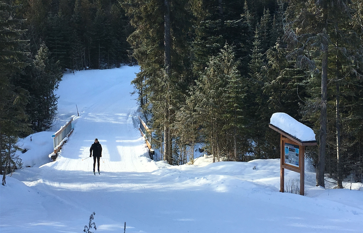 XC Trails at the Elk Valley Nordic Centre in Fernie