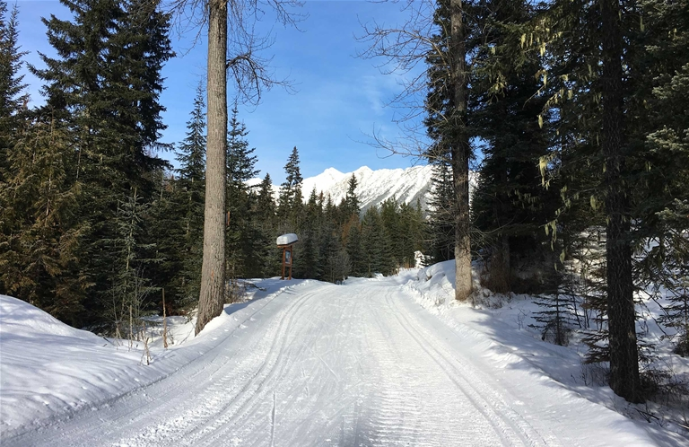 Trails at the Elk Valley Nordic Centre in Fernie