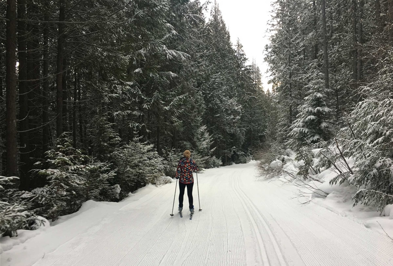 Cross-country skiing at Fernie Alpine Resort XC Trails