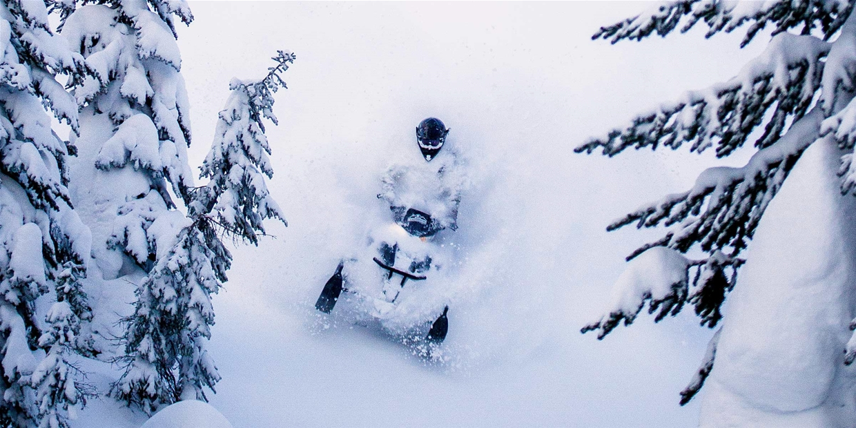 Snowmobiling Fernie's legendary powder with Weir Boondocking