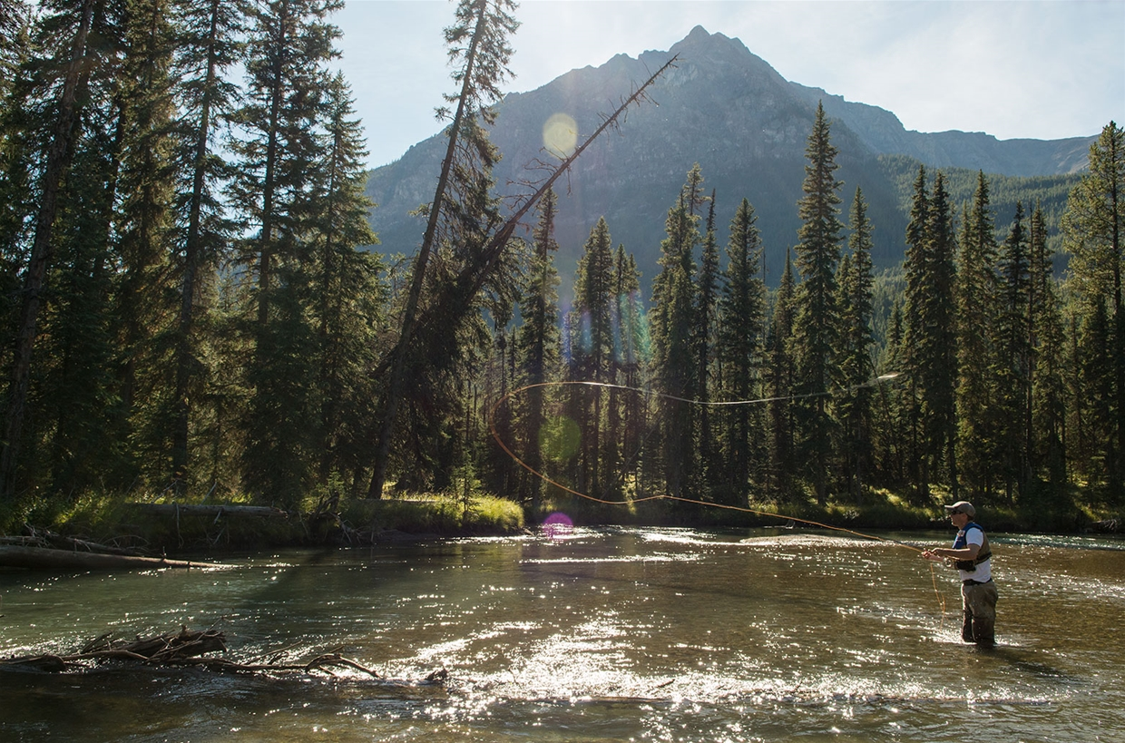 Fishing the White River near Fernie