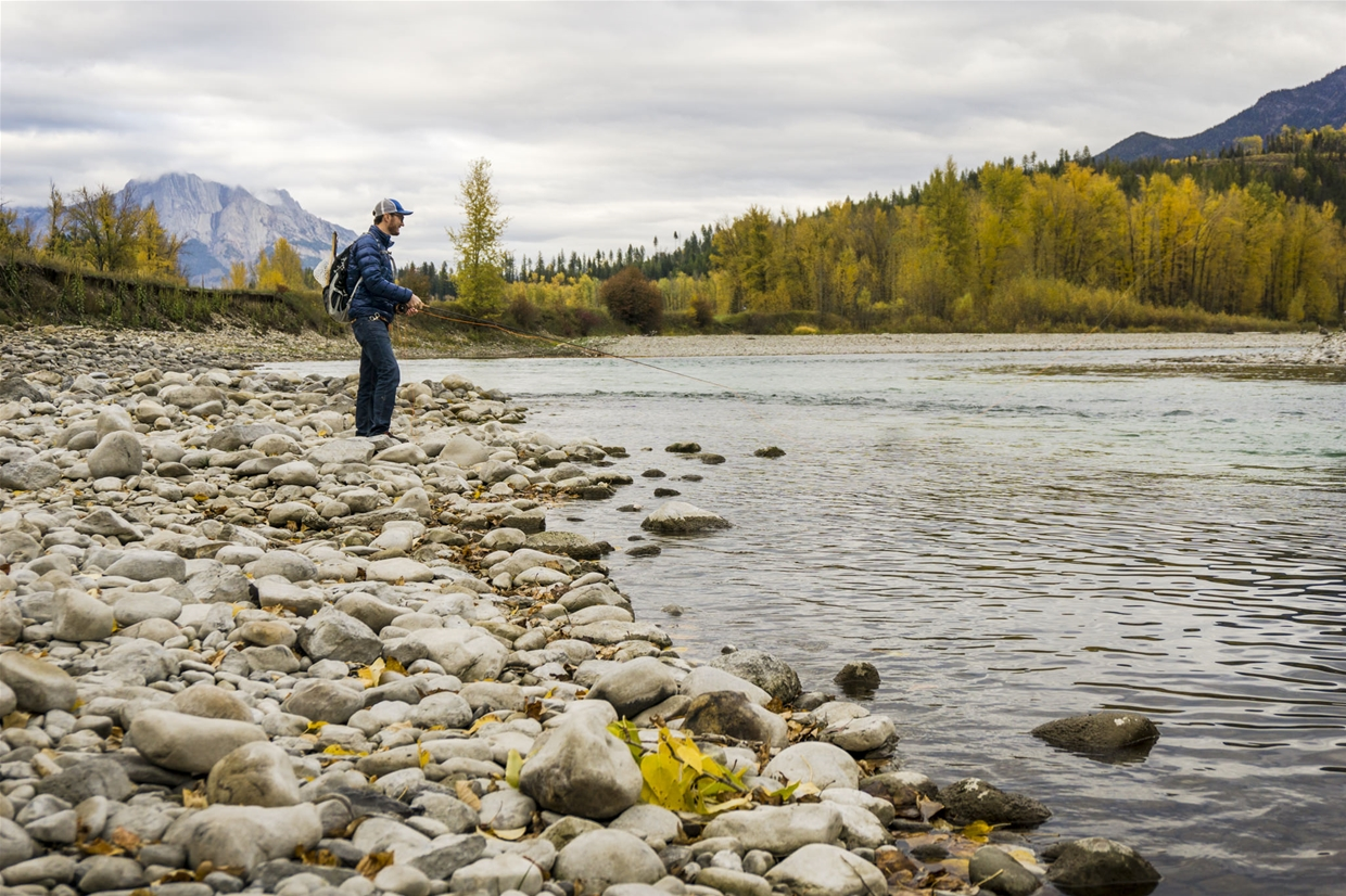 Fly fishing the Elk River in Fall Season in Fernie