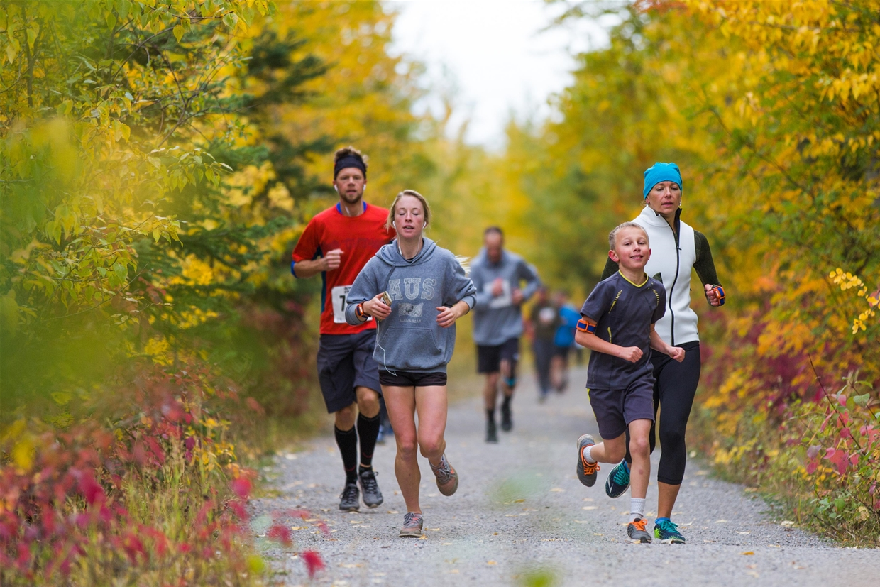 Run through Fernie's golden landscape