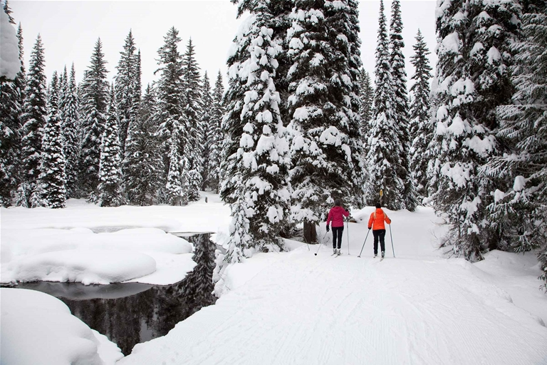 Nordic skiing Fernie BC - Island Lake Lodge