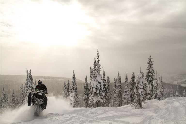 Snowmobiling in Fernie - January 2017