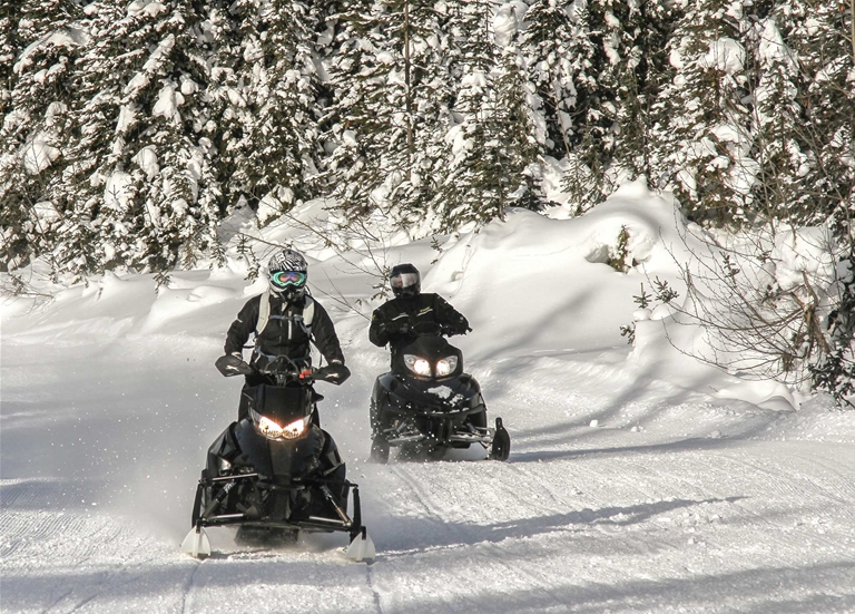 Snowmobiling around Fernie - January 2017