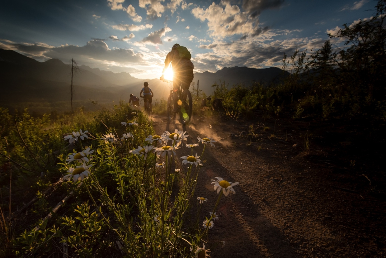 Jeff Bartlett - Mountain Biking in Fernie