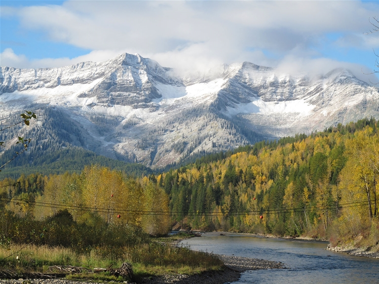Fall colours surrounding the Elk River with early snow on the Lizard Range/Fernie Alpine Resort