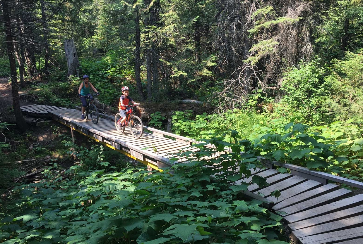 Boardwalks and bridges on Lazy Lizard Trail