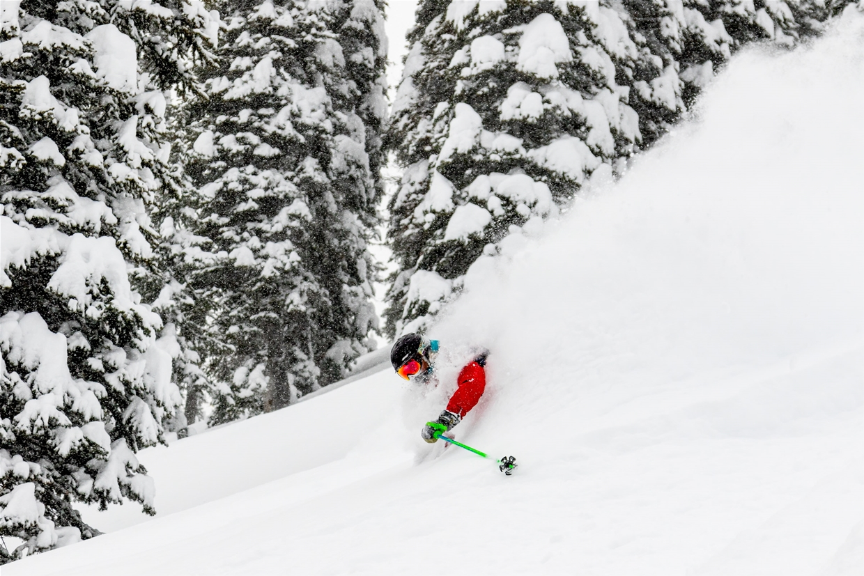 Powder day at Fernie Alpine Resort