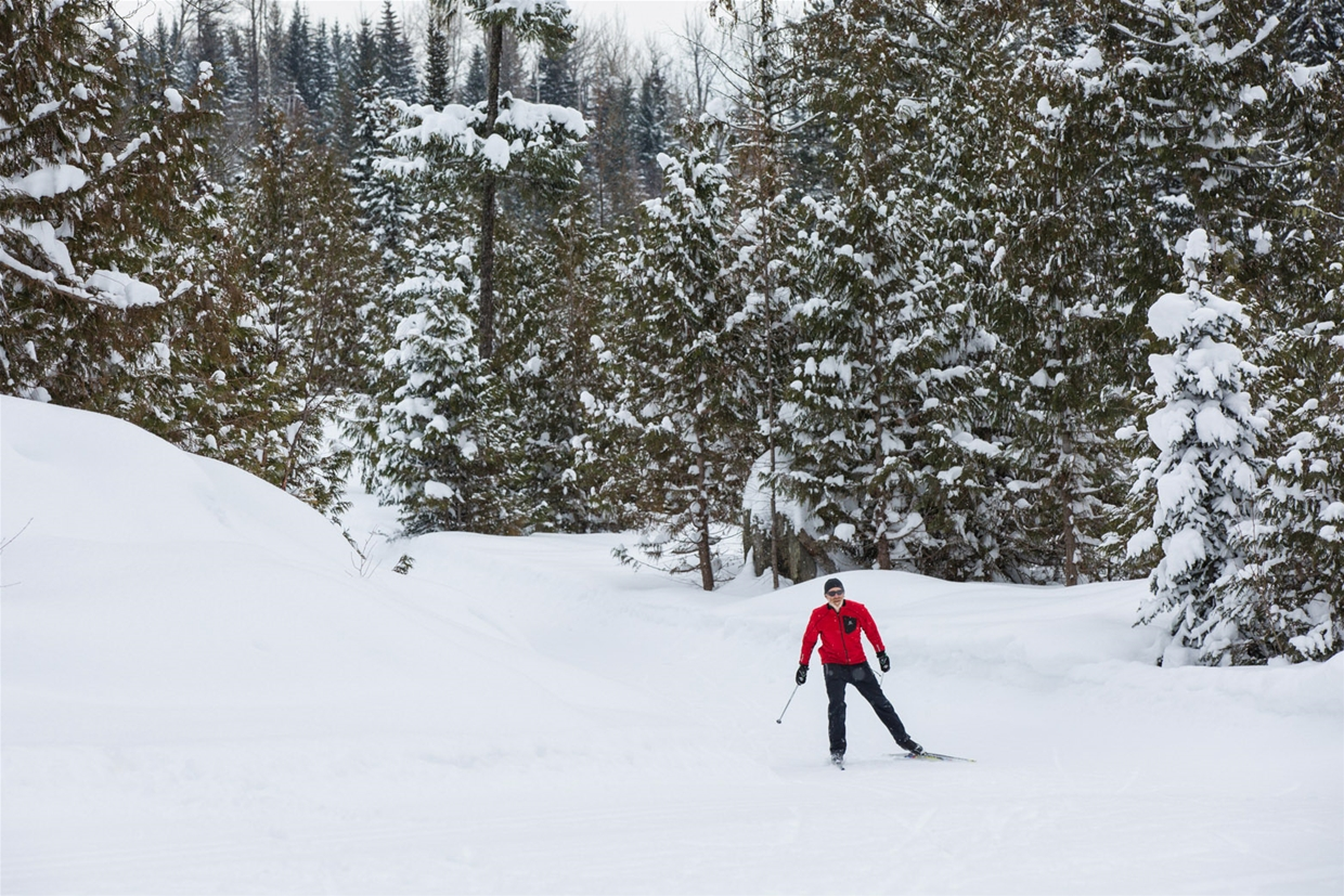 Elk Valley Nordic Centre in Fernie - Skate skier