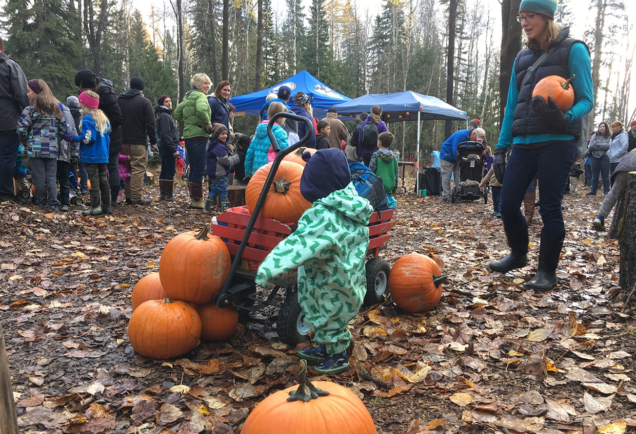 The Great Pumpkin Hunt by Fernie Nordic Society