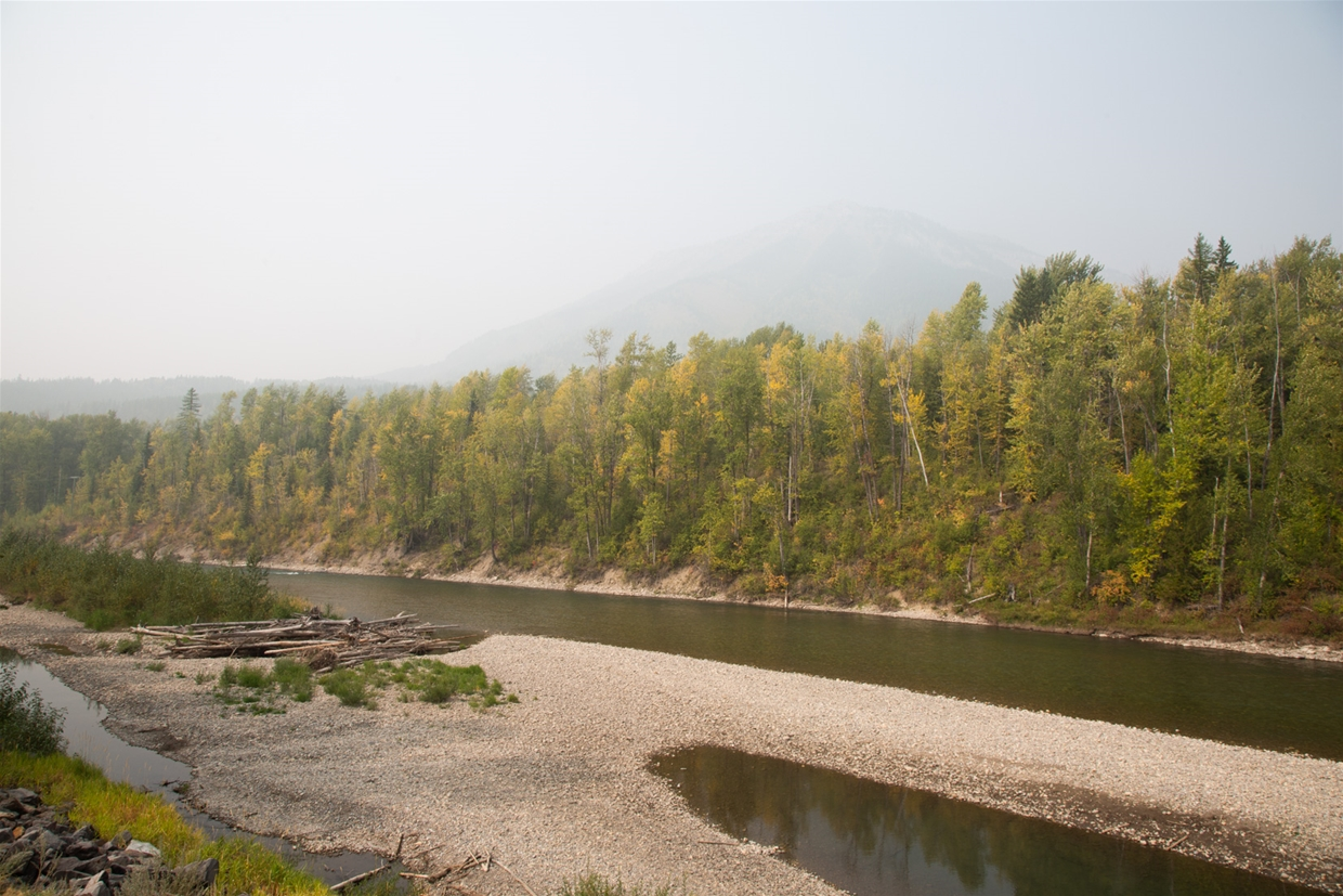 September 15th 2020, 12:30pm - North Fernie Bridge Looking NW towards Mt Fernie