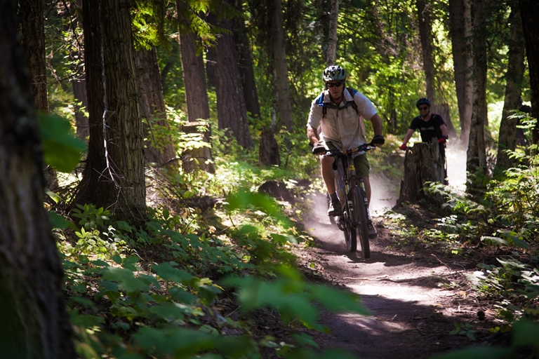 Existing singletrack trails such as the Coal Discovery Trail were integrated into the Elk Valley Trail