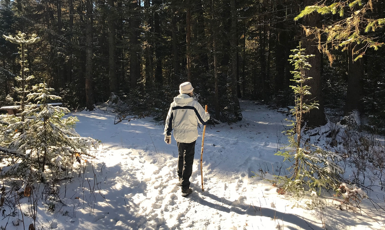 Winter walking at Mt Fernie Provincial Park