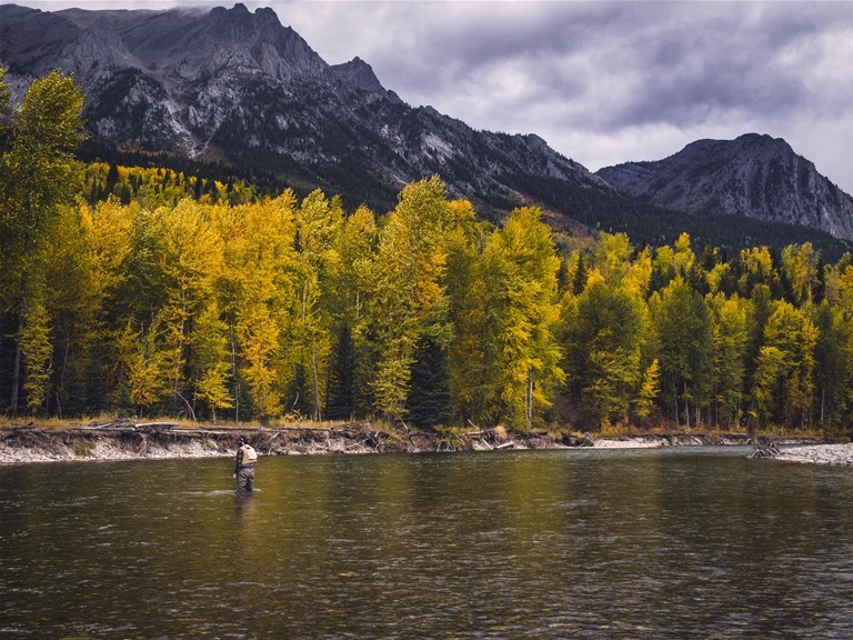 Vibrant fall days flyfishing on the Elk River - Mike Cotton