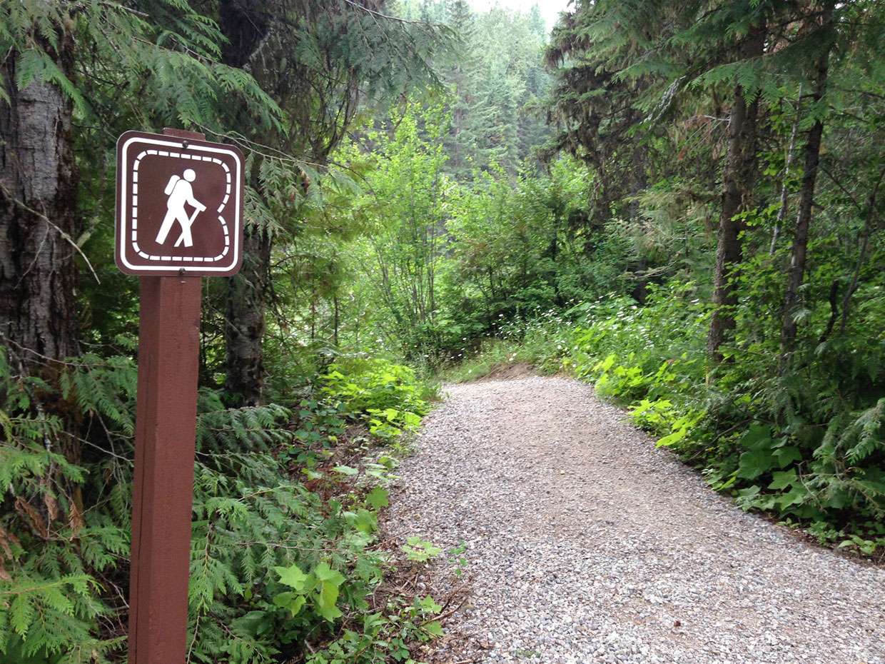 Mount Fernie Provincial Park - Trails
