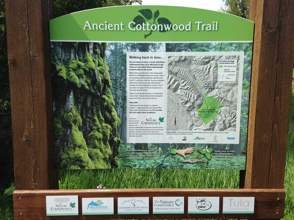 Ancient Cottonwood Trail - Trailhead Sign