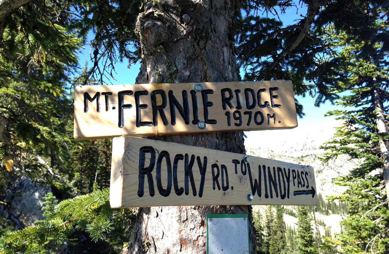 Mt Fernie Ridge Hike