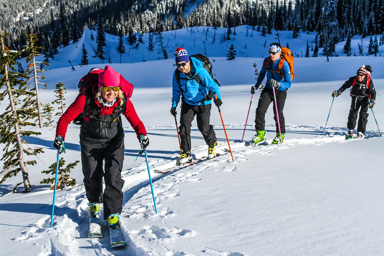 Ski Touring near Fernie