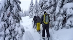 Fernie Trails and Ski Touring Club