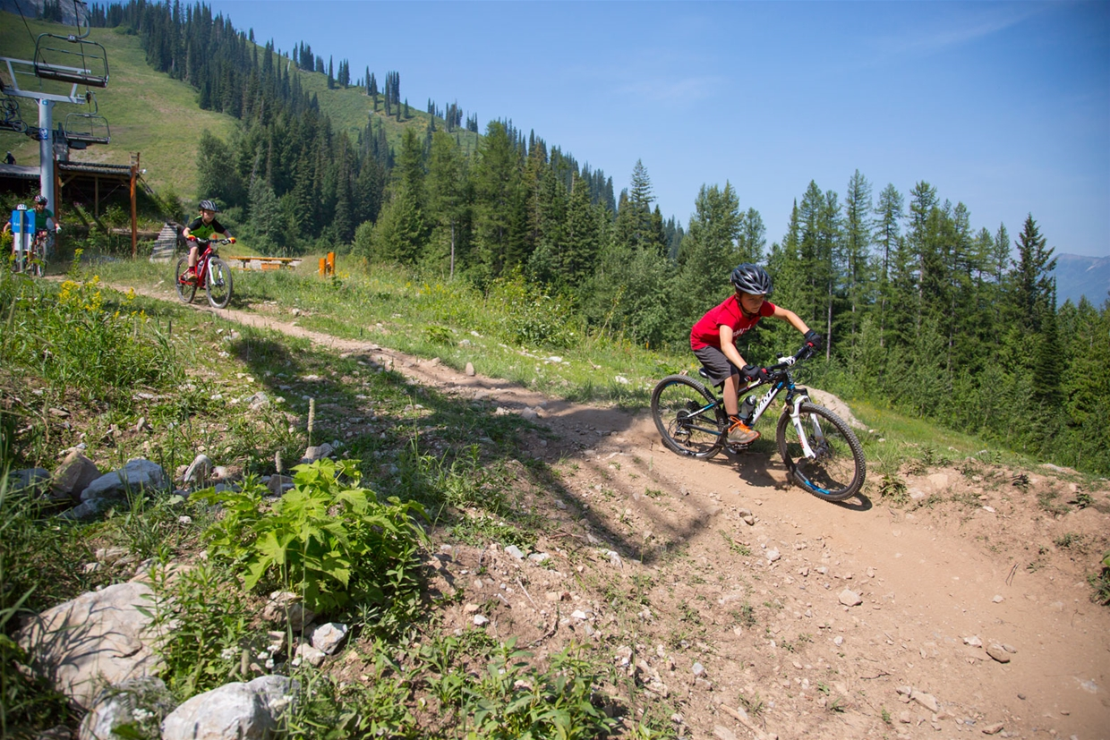 Downhill biking at Fernie Alpine Resort