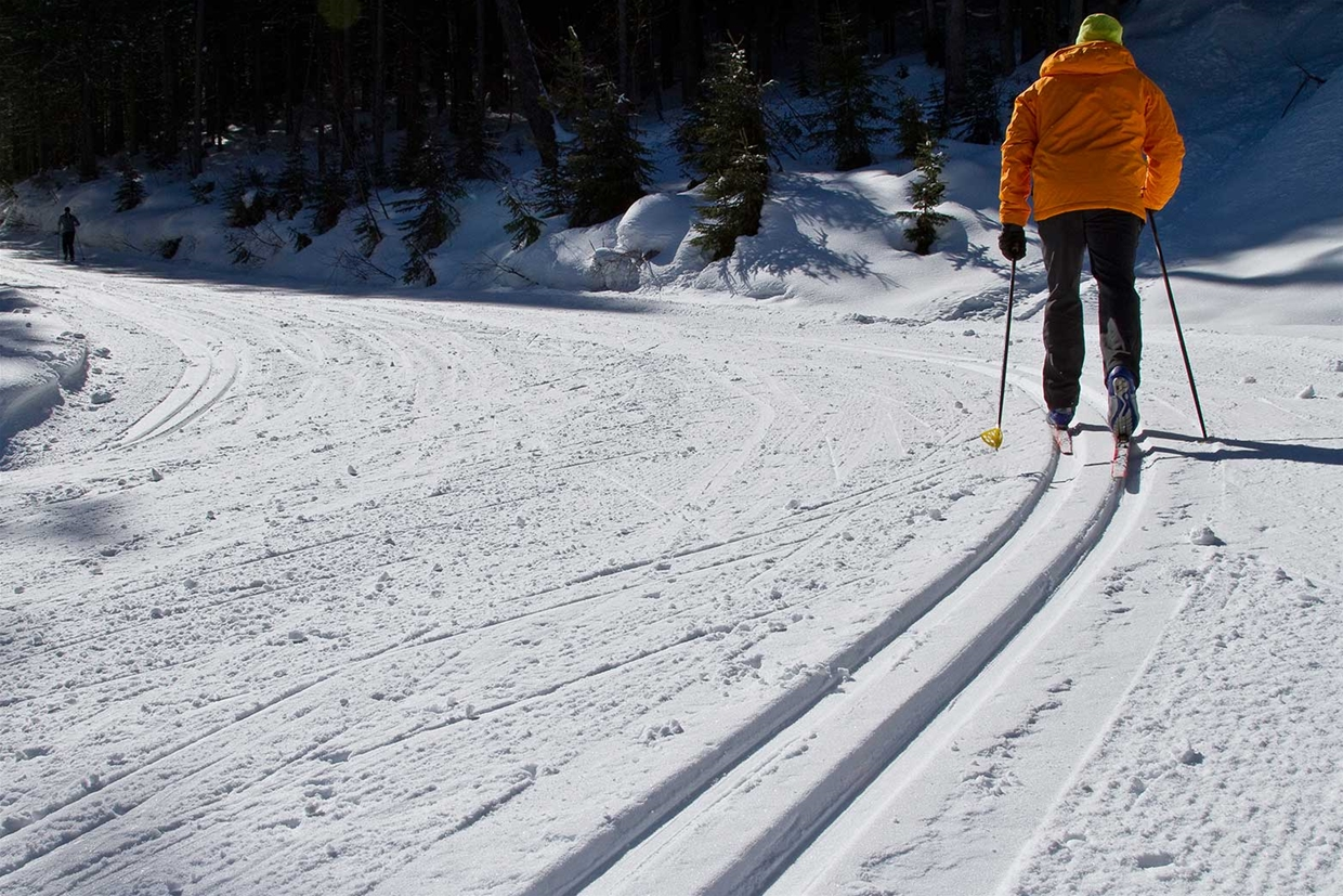 Nordic ski trail system at Fernie Alpine Resort