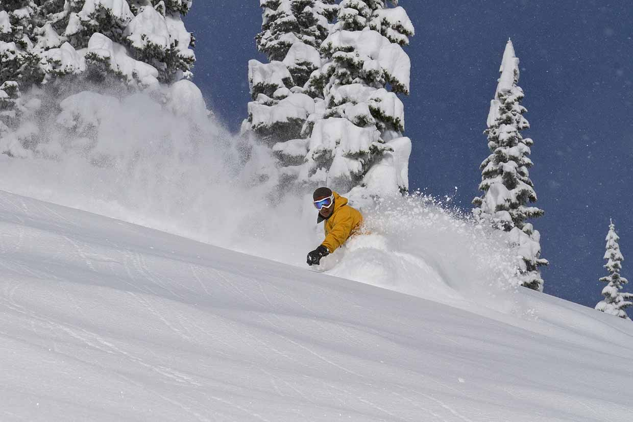 Fernie Alpine Resort - Powder