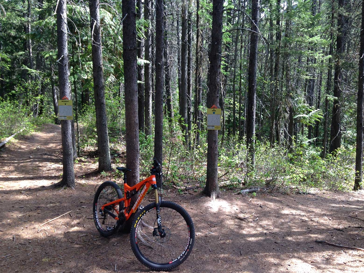 4 Corners - R-Trail, Deadfall, Broken Derailer