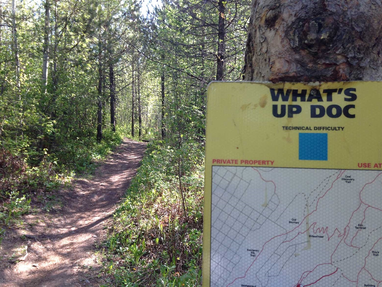 What's Up Doc Trail - Ridgemont Area