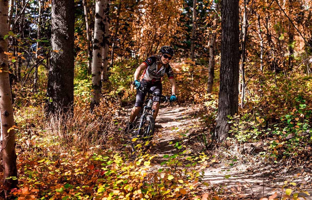 Bike trails around Fernie