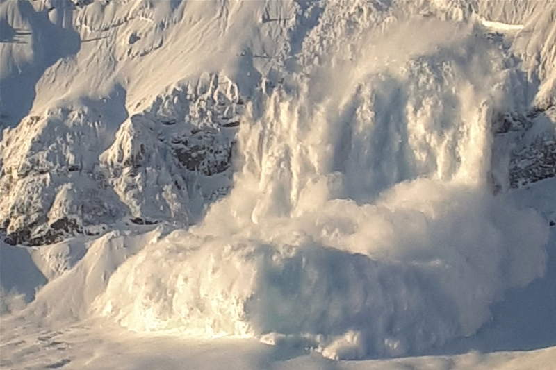 Avalanches in the Canadian Rockies
