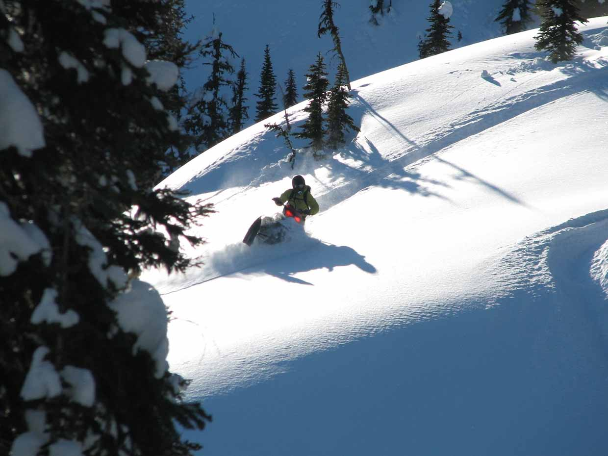 Famous Fernie powder in Harvey Pass