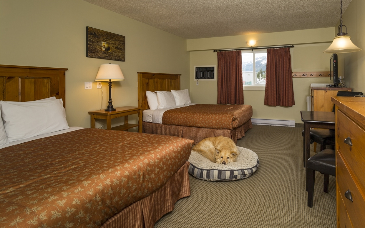 Pet Friendly Standard Rooms