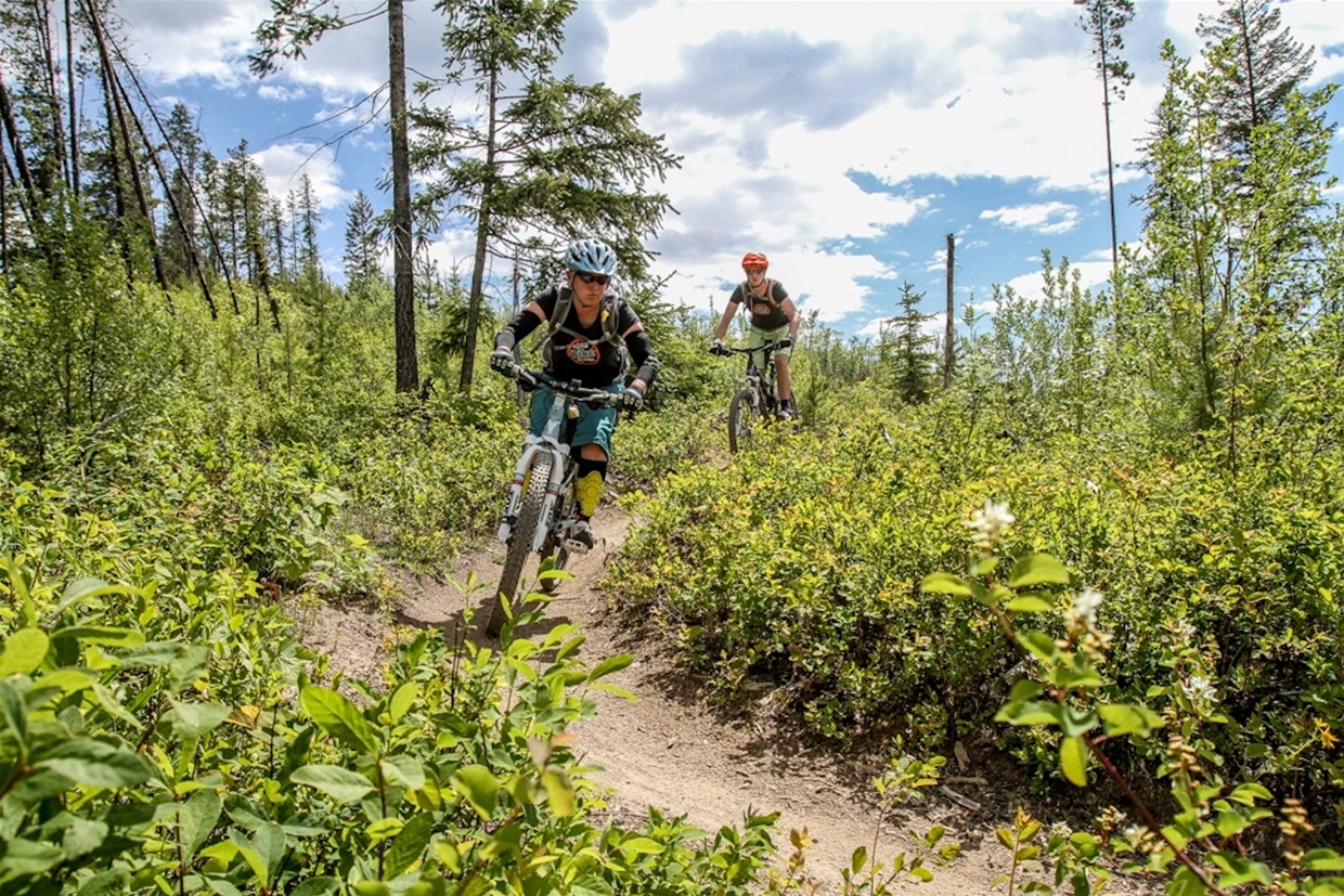 Fernie Bike Guides - Based out of The Guide's Hut