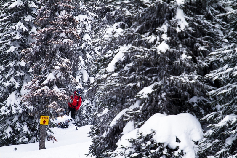 Fernie Snowmobiling with Weir Boondocking