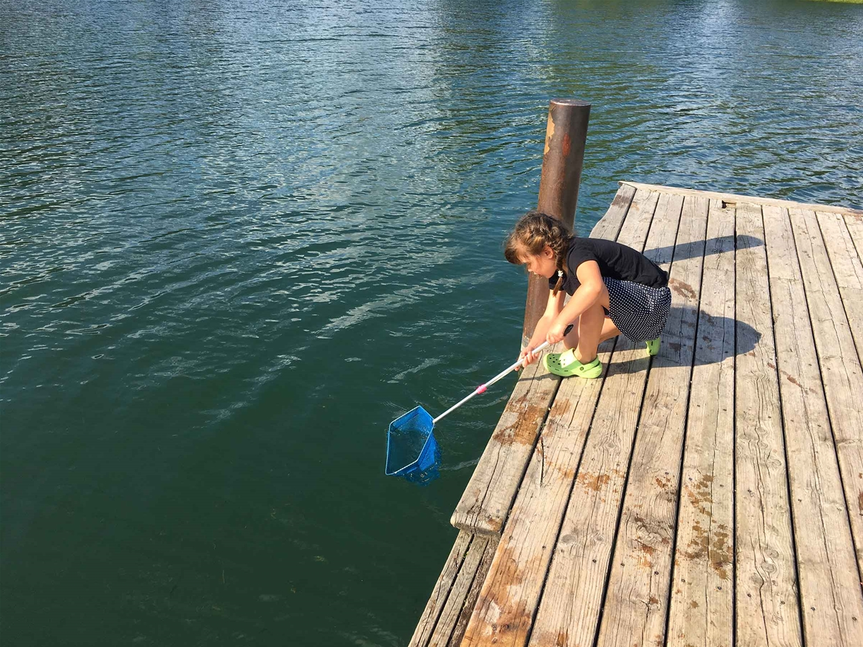 Catching minnows, great fun for the kids