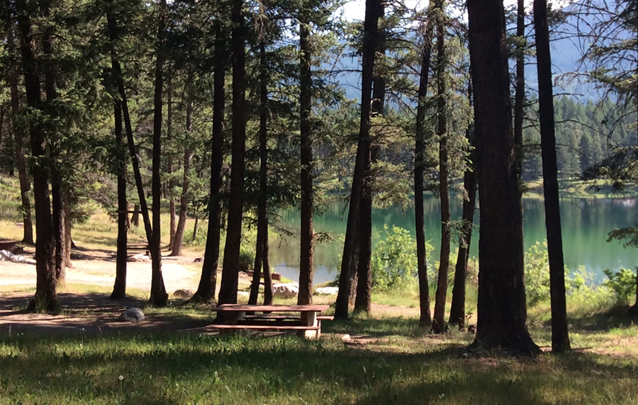 Loon Lake Forest Rec Site